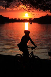 Sunset Cyclist by Valentino Visentini