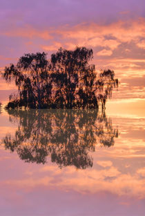 Sunset in reflection von Robert Gipson