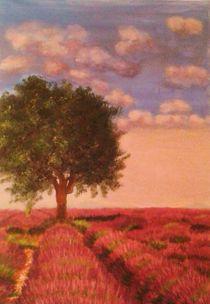 Die Farben der Provence by Rena Rady