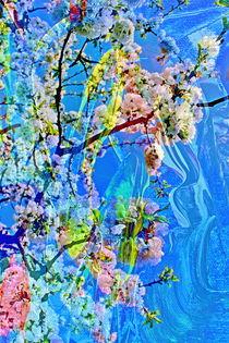 Natur Abstrakt  9 by Walter Zettl
