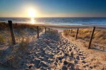 Path to the sun von Olha Rohulya