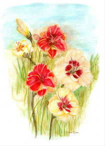 Custard Candy and Mango Orange Day Lilies by Linda Ginn