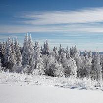 Winter im Schwarwald von Rainer Rombach
