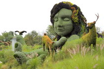 Garden Dreams von Guenther Schwermer