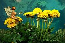 Löwenzahn Fee Dandelion Fairy von Marie Luise Strohmenger