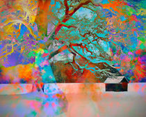 Tree of Many Colors von Edmund Nagele F.R.P.S.