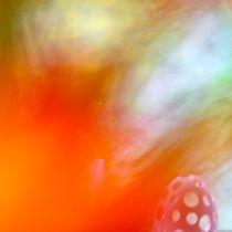 "°""O""° by © Ivonne Wentzler"