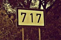 Numbers 717   -   Nummern von leddermann