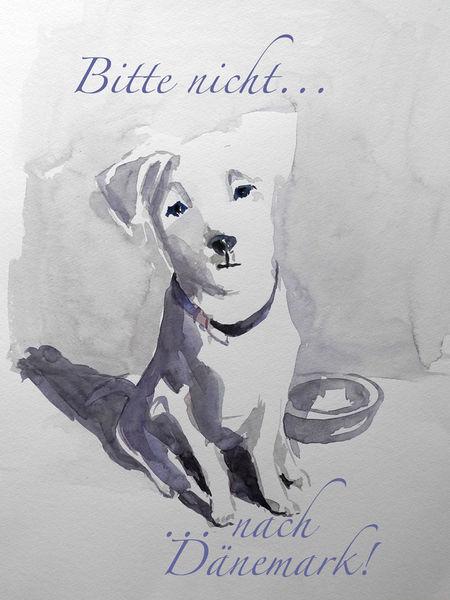Malen-am-meer-aquarell-hund-sonja-jannichsen-text
