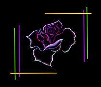 Schwares-feld-gerade-schwarzr-rose