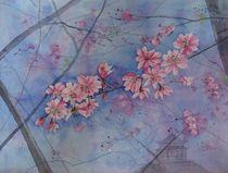 Japanische Kirsche von Sabine Sigrist
