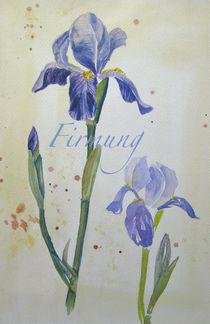 Firmung-Schwertlilie by Sonja Jannichsen