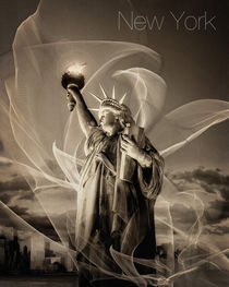 Light of Liberty von Edmund Nagele F.R.P.S.