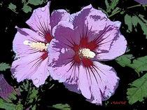 Blumenhochzeit von aquapic