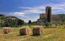Toskana - Abbazia di Sant' Antimo von Wolfgang Dengler