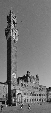 Siena - Palazzo Pubblico by Wolfgang Dengler