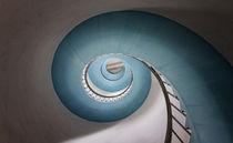 Schnecke by photoart-hartmann
