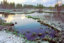 North-West Russia by Vadim Smirnov