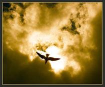 Golden Flight by crismanart