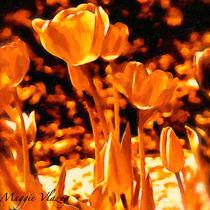 Sunny Tulip Monochrome by Maggie Vlazny