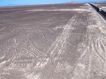 Nazca und ein paar Linien in der Wüste von reisemonster