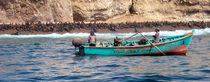 die Fischer von Ballestas by reisemonster