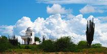 Sternenwarte in der Tatacoa Wüste von reisemonster