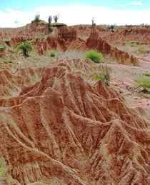 Regenrinnen in der Tatacoa Wüste von reisemonster