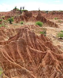 bizarre Felsen in der Wüste  von reisemonster