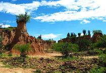 Wüstenlandschaft von reisemonster