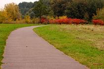 Weg in den Herbst by bagojowitsch
