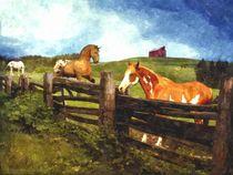Field of Horses by Davandra Cribbie