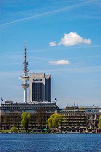 Hamburger Alster mit Fernsehturm Hamburg von Dennis Stracke