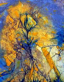 gelbes Blühen  2013 von Barbara Ast