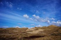 Wonderful dunes by AD DESIGN Photo + PhotoArt