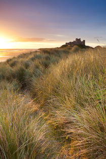 Bamburgh Castle by Sara Winter