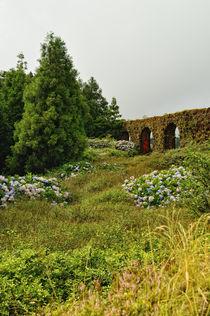 Aquädukt - Sao Miguel von Wolfgang Dengler