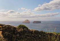 Ilhéus das Cabras - Azoren - Terceira by Wolfgang Dengler