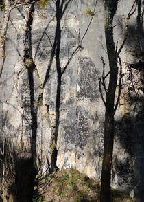 TREE ABSTRAKT von © Ivonne Wentzler