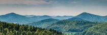 Pfälzerwald bei Annweiler (1.2) von Erhard Hess