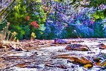 Mountain Creek in IR von Dan Richards