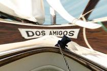 Dos Amigos by MaBu Photography