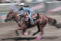 Rodeo Highlights by Guenther Schwermer