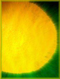 Sun in Green by Sarah Ziegler