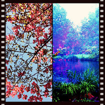 Landscape Diptych Collage  by Maggie Vlazny