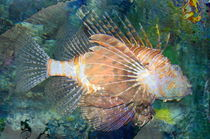 Lionfish by Kume Bryant