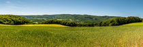 Dsc-1579-lr1-panorama-lr1-lr1-4