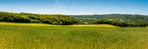 Dsc-1579-lr1-panorama-lr1-lr1