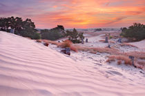 Dune Sunrise by Sara Winter