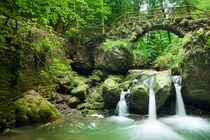 Bridge And Waterfall by Sara Winter
